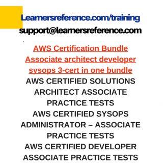 AWS certified developer - associate dumps